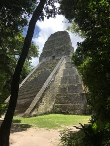large temple with stairs surrounded by several trees
